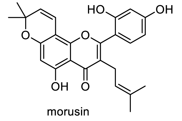 ヤマグワ 化学構造式1