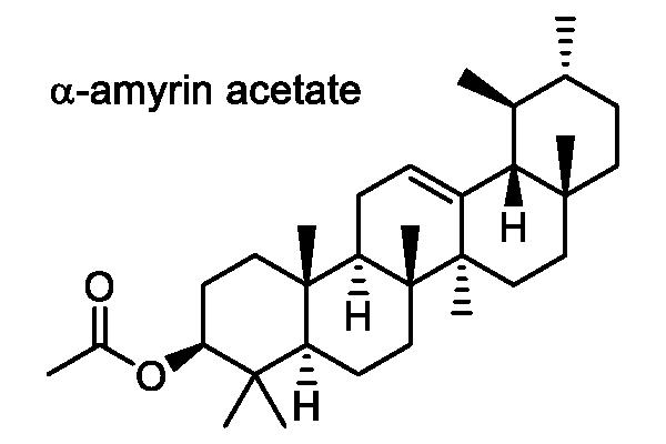 ヤマグワ 化学構造式3