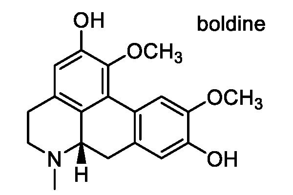 ヤマコウバシ 化学構造式2