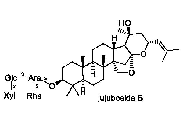 サネブトナツメ 化学構造式1