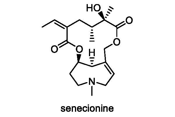 フキタンポポ 化学構造式2