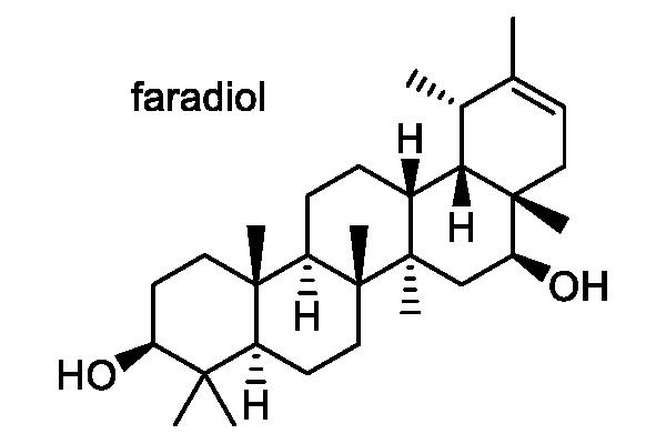 フキタンポポ 化学構造式3