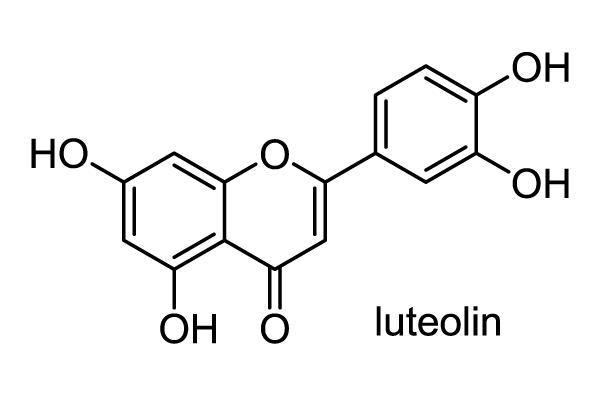 サイヨウシャジン 化学構造式1